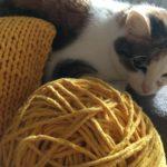 dywanik ze zpagetti